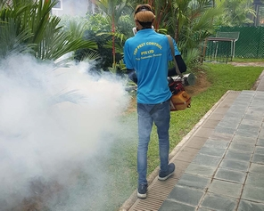 fumigation Singapore