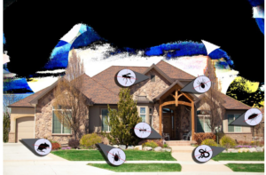 Hire Professional For Pest Control Services